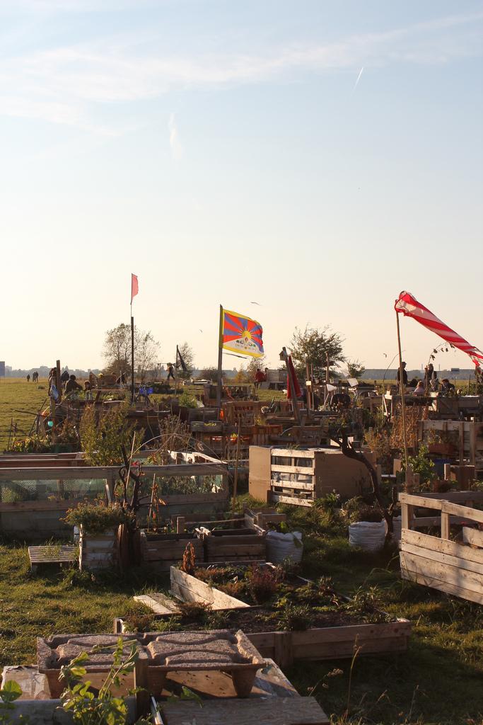 Gemeinschaftsgarten Allmende-Kontor am Tempelhofer Feld